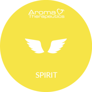 Synergie Spirit